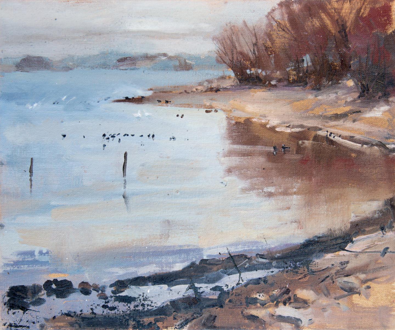 Rutland Water, The Dam End, Sykes Lane, Jan 2019