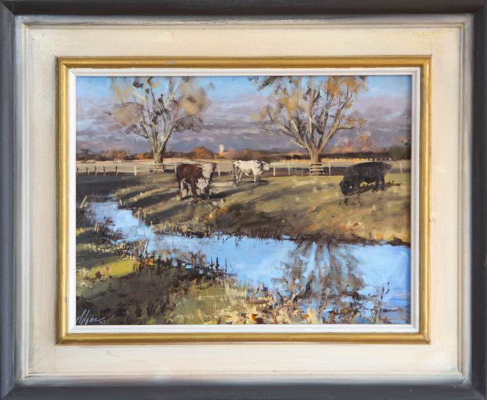 Warmington Cow Pastures