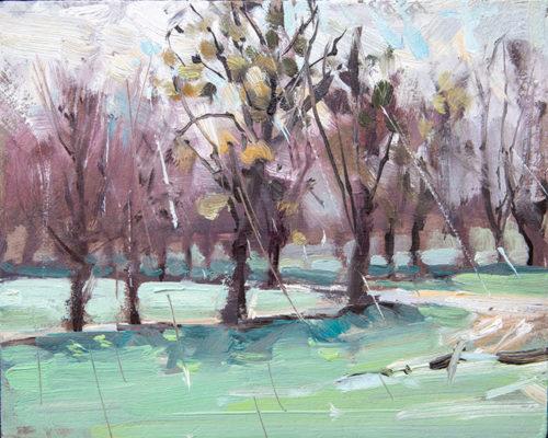 Mistletoe and rain, Burghley House